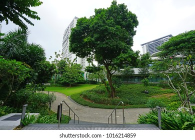 SINGAPORE -17 DEC 2017- View of the campus of Yale NUS, an outpost of the New Haven Ivy League at the National University of Singapore (NUS), the oldest research and teaching university in Singapore.