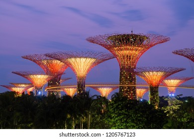 SINGAPORE - 17 SEPTEMBER 2018 : SuperTree Grove at garden by the bay  Singapore. Spanning 101 hectares, and five-minute walk from Bayfront MRT Station.