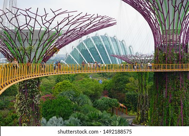 SINGAPORE -25 AUG 2019- View of the Supertree Grove, man-made metal structures looking like trees in the Gardens by the Bay in Singapore.