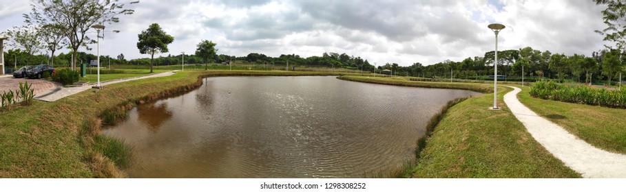 SINGAPORE- 27 JAN, 2019: View of Lorong Halus Wetland in Singapore. Formerly a landfill site, Lorong Halus Wetland sits next to Serangoon Reservoir,