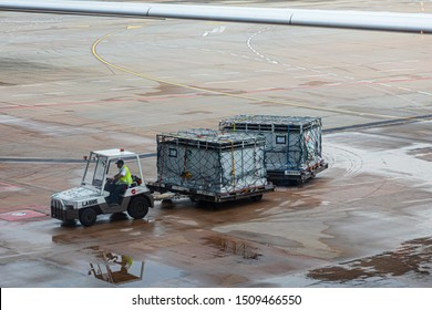 Singapore - 29 June 2019: An apron tractor dragging two large dollies holding two aircraft cargo Unit Load Devices with vernilation grille for animal transport.