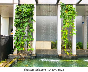 Singapore: 9 March 2019 - Water curtain system, curtain of falling water with leaves as decoration.