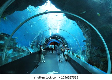 SINGAPORE - APRIL 13, 2016 : Unidentified visitors at S.E.A Aquarium, Singapore. It is largest aquarium in Asia featuring 800 species of marine life in a variety of habitats.