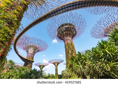 SINGAPORE - APRIL 19th, 2016: Gardens by the Bay is a park or botanic garden in Singapore.