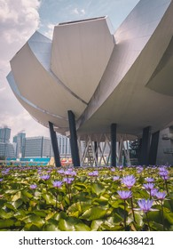 Singapore - April 2, 2018: ArtScience Museum. Modern, futuristic architecture. Water flowers on the foreground.