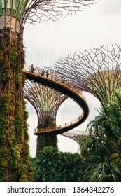 Singapore - April 2, 2018: Gardens by the bay. Futuristic giant trees and beautiful pink flowers in park. Future city concept.