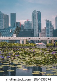 Singapore - April 2, 2018: Singapore panorama skyline at daytime. Modern skyscrapers. Water flowers on the foreground.