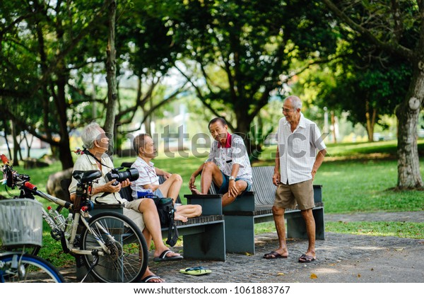 Singapore, April 2018: A group of elderly, old Chinese men sit around a bench in Bishan park (Singapore) with green trees and are chatting. One of them is holding a professional DSLR camera.