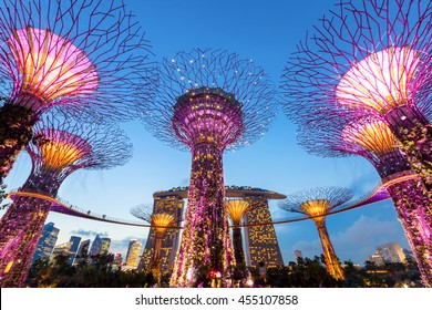SINGAPORE - APRIL 25, 2013: Supertrees at Gardens by the Bay. The tree-like structures are fitted with environmental technologies that mimic the ecological function of trees.