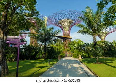 Singapore, Singapore - Aug 29 : Pathway leading to Supertree Grove at Gardens By The Bay in Singapore taken in the day on August 29, 2013