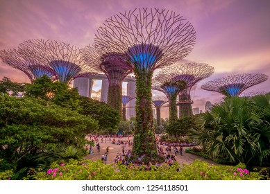 singapore, singapore - August 11, 2018: Gardens by the Bay with supertree groove at marina bay