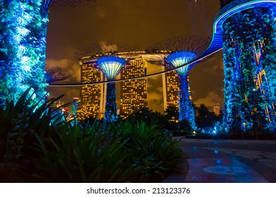 SINGAPORE - AUGUST 11 : Night view of The Supertree Grove at Gardens by the Bay on August11, 2014 in Singapore. Spanning 101 hectares of reclaimed land in central Singapore