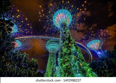 Singapore, Singapore - August 24 2019: The solar energy powered Supertree Grove lights up at night in Singapore's Marina Bay area's Gardens by the Bay