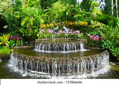 Singapore Botanic Gardens - UNESCO World Heritage Site