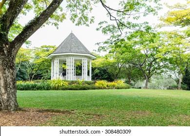 Singapore Botanical Garden Landscape