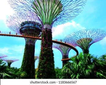 Singapore, Central Region / Singapore - April 8th 2018: Gardens by the Bay