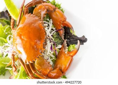 Singapore Chilli Mud Crab