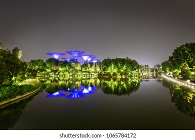 Singapore city, Singapore - December 11 2017: Supertree Grove, Gardens by the Bay, at night with reflection in the water