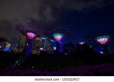 SINGAPORE CITY, SINGAPORE - FEBRUARY 03, 2019: Gardens by the bay in Singapore, Unique vertical gardens resembling towering trees, with large canopies & colorful lights at night