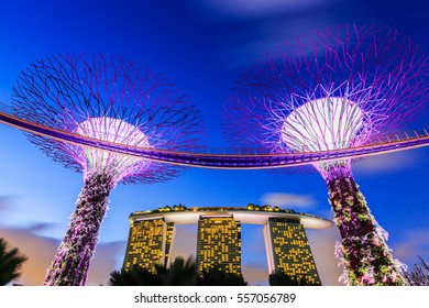 Singapore City, Singapore - January 8, 2016 Supertree Grove in the Gradens by the Bay