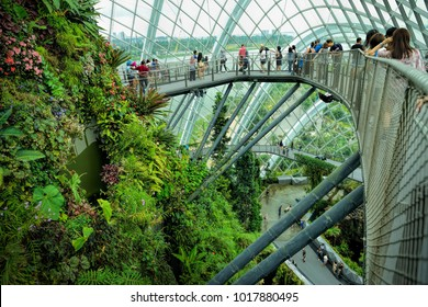 SINGAPORE - DECEMBER 9: Flower Dome at Gardens by the Bay on December 9, 2017 in Singapore. Spanning 101 hectares of reclaimed land in central Singapore, adjacent to Marina Reservoir.