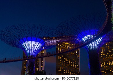 SINGAPORE - FEB 22 : Supertrees in Gardens by the Bay in Singapore on Februery 22 2018. It is a music and light show when trees are illuminated by different colors