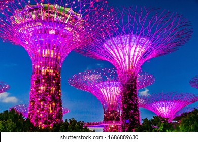 SINGAPORE - FEB 29, 2020: Gardens by the Bay, nature park in the Central Region of Singapore, adjacent to the Marina Reservoir
