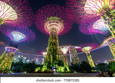 "SINGAPORE, SINGAPORE - FEBRUARY 17, 2017: Night view of Super trees at Gardens by the Bay. The park of a strategy by the Singapore government  ""Garden City"" to a ""City in a Garden""."