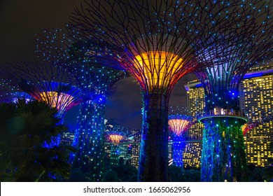 SINGAPORE, SINGAPORE - FEBRUARY 26, 2020: Gardens by the Bay and Marina Bay Sands Hotel illuminated at night in Singapore