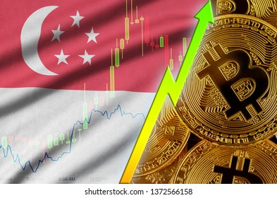 Singapore flag and cryptocurrency growing trend with many golden bitcoins