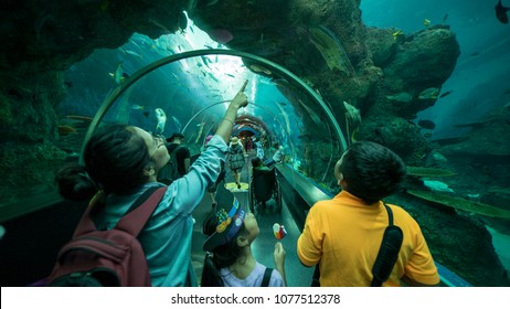 Singapore, Indonesia. February 15, 2018: Picture of young mother and her children looking at fish in S.E.A. Aquarium, Singapore