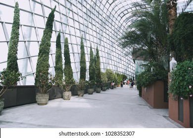 SINGAPORE - JANUARY 04, 2015 : Tourists in Inside Cloud forest Dome of Gardens by the Bay, Singapore.