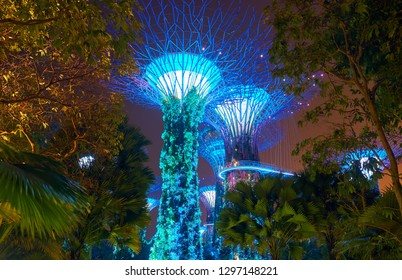 SINGAPORE - JANUARY 12, 2019:  Gardens by the Bay is a nature park  in the Central Region of Singapore