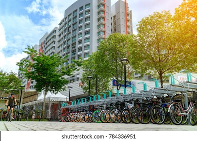 SINGAPORE - JANUARY 26, 2017_Punggol bike parking lot at Punggol district in Singapore, with sunlight effect