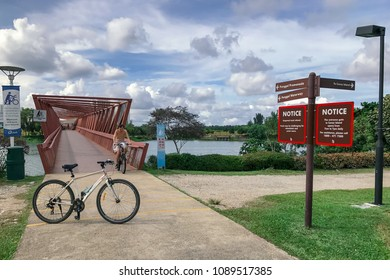 SINGAPORE - JANUARY 26, 2017_Rider crossing the Lorong Halus Bridge at Punggol Waterways, Singapore. Tourists can walk across the Lorong Halus Bridge from the Punggol side across the Serangoon River
