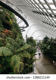 Singapore - January 28, 2019: Panorama of Conservatory Cloud Forest Dome in Singapore