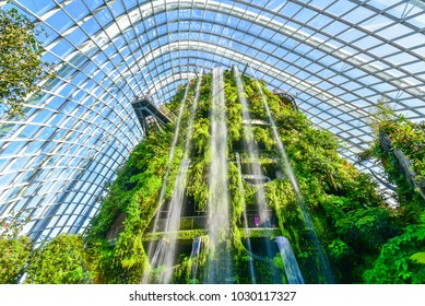 SINGAPORE - JANUARY 7: Inside of the Cloud Forest Dome - Garden by the Bay.