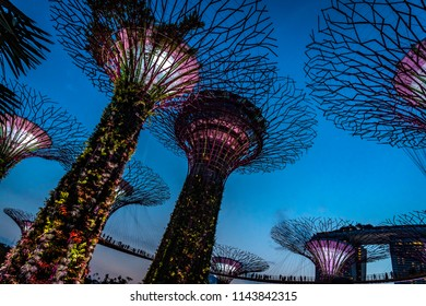SINGAPORE - July 25 , 2018: Gardens by the Bay in Singapore. Beauty giant