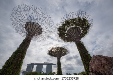 SINGAPORE - JUNE 19, 2019: Walkway at The Supertree Grove at Gardens by the Bay in Singapore near Marina Bay Sands hotel