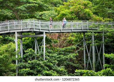 SINGAPORE - JUNE 23, 2018: the bridge at southern ridges on the weekdays with some tourists on their way to trek the route