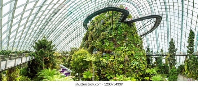 SINGAPORE - JUNE 23, 2018: Panorama of Conservatory Cloud Forest Dome in Singapore at summer day