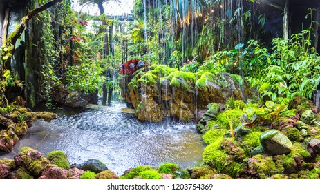 SINGAPORE - JUNE 23, 2018: Panorama of Waterfall in the Conservatory Cloud Forest Dome in Singapore at summer day