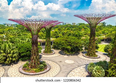 SINGAPORE - JUNE 23, 2018: The Supertree Grove at Gardens by the Bay in Singapore near Marina Bay Sands hotel at summer day