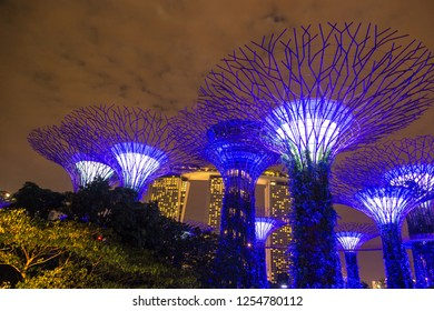 SINGAPORE - JUNE 23, 2018: The Supertree Grove at Gardens by the Bay in Singapore near Marina Bay Sands hotel at summer night