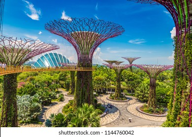 SINGAPORE - JUNE 23, 2018: Walkway at The Supertree Grove at Gardens by the Bay in Singapore near Marina Bay Sands hotel at summer night