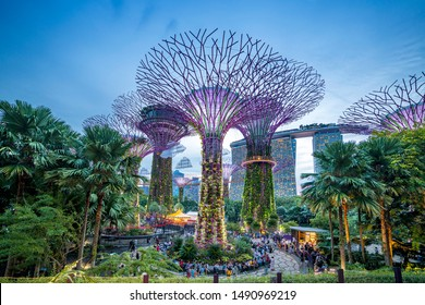 Singapore, Singapore - June 7, 2019: Supertree of Gardens by the Bay in singapore at night