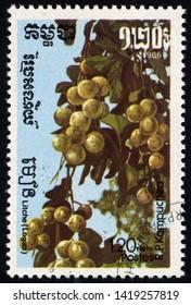 SINGAPORE - JUNE 9, 2019: A stamp printed Cambodia shows Longan (Dimocarpus longan), circa 1986