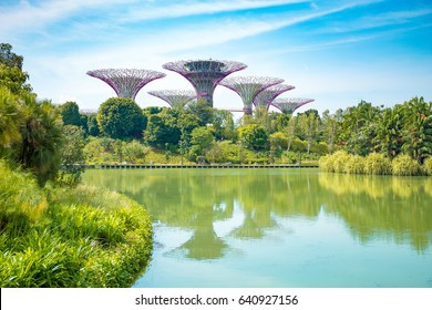 Singapore, Malaysia - April 4, 2016: Grove Gardens in Singapore. super tree garden. Grove Gardens in Singapore