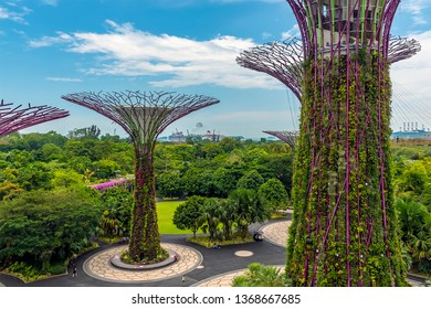 SINGAPORE - Mar 10, 2019: A landscape view of the super tree grove in the Gardens by the Bay in Singapore, Asia