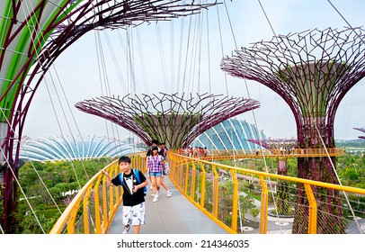 SINGAPORE - MARCH 05, 2013: Tourists at Gardens by the Bay at sunset in Singapore. Gardens by the Bay was crowned World Building of the Year at the World Architecture Festival 2012